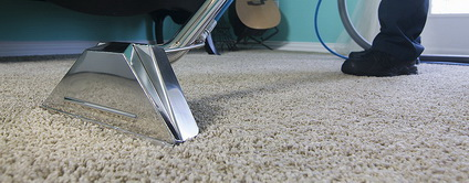 carpet cleaning bell flower